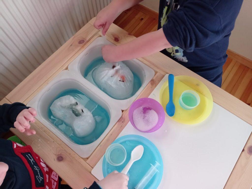 6+1 δραστηριότητες για να γνωρίσουν τα παιδιά, τα ζώα της Αρκτικής